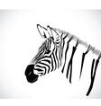 zebra 2 vector image vector image