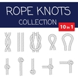 Rope knots collection vector image
