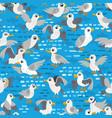 seagull seamless pattern coast sea vector image vector image