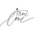 true love phrase with simple heart vector image vector image