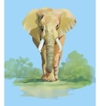 Watercolor elephant on blue background vector image