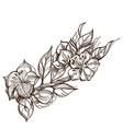 spring flowers branch of blooming tree floral vector image