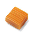 caramel candy close-up on white background vector image vector image
