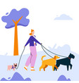 character woman leads dogs vector image