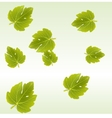 Fig leaves background vector image vector image