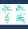 merry christmas rabbits on vector image