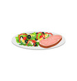 piece ham with a salad vegetables and greens vector image vector image