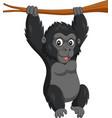 cartoon bagorilla hanging in tree branch vector image vector image