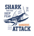 Dangerous shark with typo vector image
