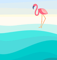 Flamingo background