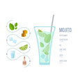 popular alcoholic cocktail mojito vector image