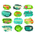 set promo labels tropical flowers and green leaves vector image