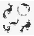 symbol exotic birds vector image vector image