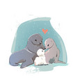 cute seal family vector image
