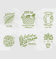 healthy organic food logos set or labels and vector image vector image