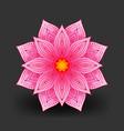 pink lotus flower pattern on black background vector image
