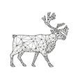 caribou side nodes black and white vector image
