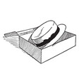 hat in a box vintage engraving vector image vector image