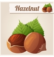 Hazelnuts Detailed Icon vector image vector image