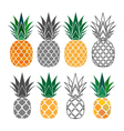 pineapple yellow gray icons set vector image vector image