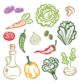 Salad vegetable vector image vector image