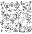 Set of hand-drawn floral elements vector image
