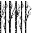 stylized black birch on white background vector image vector image