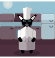 Brown and blue green cat cook in the kitchen vector image vector image