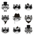 cute cartoon hipster raccoons with mustaches and vector image vector image