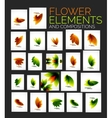 flower elements set vector image