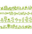 herbs seamless pattern for your design vector image