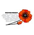 Isolated poppy flower poster