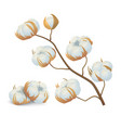 realistic detailed 3d cotton flowers branch vector image vector image