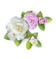 rose bouquet white and pink vector image vector image