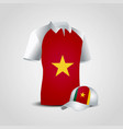 cameroon flag shirts design vector image