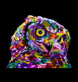 colorful owl on pop art style vector image