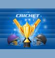 cricket championship - cricket helmet bat and vector image vector image