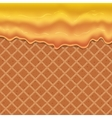 Flowing glaze on wafer texture sweet food vector image vector image