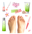 Pedicure Female Feet Set vector image vector image