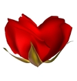 Stylish red rose isolated on white EPS 10 vector image vector image
