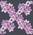 color seamless pattern of plumeria flowers vector image