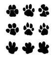 footprints hippopotamus vector image vector image