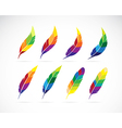 group of an feathers design vector image