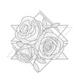 rose flowers in triangle geometrical shapes hand vector image vector image