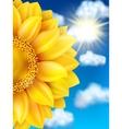 Sunflower against blue sky EPS 10 vector image vector image