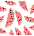 Watermelon Slices summer background vector image vector image