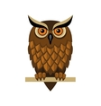 Owl Isolated on White vector image
