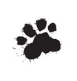 grunge dog foot print black paw isolated on white vector image