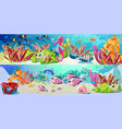 cartoon bright marine life horizontal banners vector image vector image