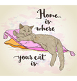 Cat on pillow and lettering vector image vector image